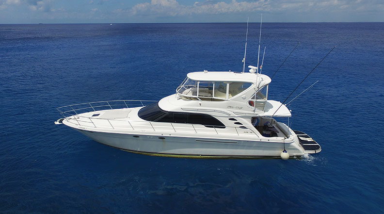 searay 55 ft our boats