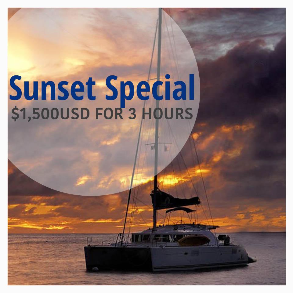 SunsetSpecialCat45